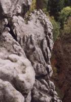 Pseudoškrapy povrchových částí Křídelních stěn nad Pravčickým dolem, Markéta Vajskebrová, 2002