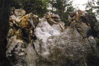 Husa - železité inkrustace na hřbetu, Jiří Adamovič, 1999