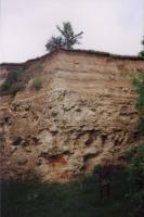 Tuchořice - býv. Lom, vápence spodnomiocénního stáří, Markéta Vajskebrová, 2001