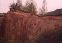 Prokopské údolí - hákování vrstev, Pavel Čáp, 2000