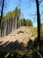 Výchozy žaltmanských arkóz na svazích údolí Jíveckého potoka, Pavla Gürtlerová, 2004