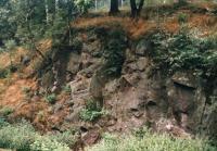 Zbyněk Šimůnek, 2002