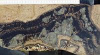 Lom v Podlesí - detail textury žilného granitu, část ploché granitové žíly s dominantním vývojem zinnwalditu (černý), apatitu (hnědý) a velkými usměrněnými zonálními krystaly křemene, v cm., Karel Breiter, 2003