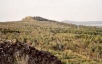 Velký Špičák - pohled ze Středního Špičáku, zbytky neovulkanitů, Pavla Gürtlerová, 2003