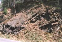 Proseč - odkryv hornin železnobrodského vulkanického komplexu, Markéta Vajskebrová, 2003
