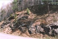Proseč - výchozy železnobrodského krystalinika v zářezu silnice, Markéta Vajskebrová, 2003