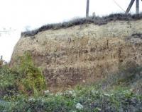 Sedlešovice - půdní horizony ve spraších, Pavla Tomanová Petrová, 2003