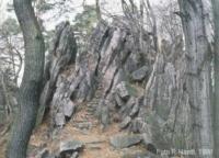 Vrcholová partie Babího lomu, skalnatý hřbet tvořený spodnodevonskými slepenci, Pavel Hanžl, 1998