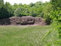 Opuštěný lom (pískovna)  permských pískovců na východ od Kounic u hřbitova, Pavla Gürtlerová, 2005