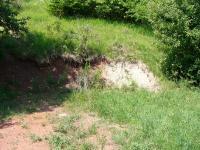 Tektonická hranice mezi mladším proterozoikem (světlé jílovité zvětraliny) a permem (červené zvětralé pískovce), Pavla Gürtlerová, 2005