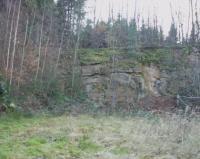 Celkový pohled. V pravé části žíla pegmatitu (světlá)., Karel Breiter, 2002