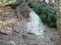 Dánsko u Malých Svatoňovic - příkře postavené cenomanské pískovce a slepence trutnovského souvrství, Pavla Gürtlerová, 2004