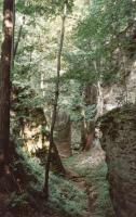 Vysoký kámen u Stárkova - sklaní rozsedlina 100 x 5-15 m, Pavla Gürtlerová, 2003