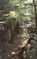 Vysoký kámen u Stárkova - skalní rozsedlina, Pavla Gürtlerová, 2003