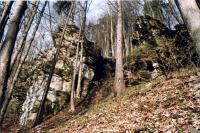 Slínovcové až vápencové skalní sruby na lokalitě Kozínek, Jiří Spíšek, 2003