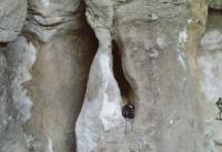 Pískovcové sloupky - zvětralé svrchnokřídové vápnité pískovce, Pavla Gürtlerová, 2003
