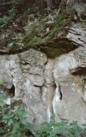 Selektivně zvětralé pískovcové sloupky, Pavla Gürtlerová, 2003