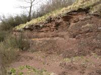 Rožmitálský úvoz - jezerní sedimentace broumovského souvrství, Pavla Gürtlerová, 2004