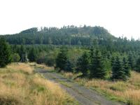 Jelení hora (993,5m) od severu (přístupová cesta), Bedřich Mlčoch, 2003