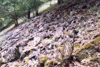 Chlum - kamenné moře na stáních Chlumské hory, Markéta Vajskebrová, 2005