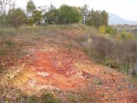 Odkrytá část porcelanitů ve východní části zarůstajícího lomu, Pavla Gürtlerová, 2006