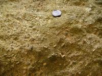 Porfyrický biotitický granit až granodiorit na nádvoří hradu Loket s vyrostlicemi draselného živce., Pavla Gürtlerová, 2007