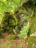 Skalní výchoz olivinických a melilitických nefelinitů na jihu Komorní hůrky., Pavla Gürtlerová, 2007