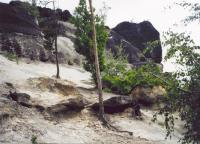 Vrcholová část Lobečské skály (nýřanské vrstvy) nad železniční tratí Kralupy nad Vltavou - Roudnice, Přemysl Zelenka, 2006