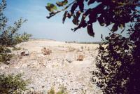 Úprava a zhutňování skládky, Přemysl Zelenka, 2006