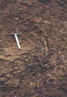 Esovitě zakončená zlomová plocha ve svrchní části profilu slánského souvrství, Marcela Stárková, 2002