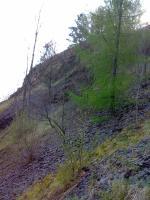 Jižní svahy cihelny., Jakub Březina, 2008