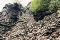 Deskovitá odlučnost znělce na západním svahu Malého Bezdězu., Ondřej Svačinka, 2004