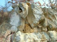 V opuštěném lomu Brodka mezi Mladčí a Měrotínem jsou v šedých lavicovitých devonských vápencích vyvinuty tzv geologické varhany. Ty vznikaly tak, že nadložními sedimenty a zvětralinami prosakovala voda, která rozpouštěla vápenec a vytvářela v něm typické lalokovité a trubicovité útvary. V nich se potom usazovaly přemístěné zvětraliny i fluviální štěrky. Valouny štěrků dokládají transport materiálu z okolních hornin tzv. kulmské facie – drob, prachovců a břidlic. , Jiří Otava, 2006