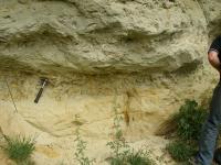 Svrchnocenomanské pískovce s bouřkovou polohou s masivním nahromaděním ústřic Rhynchostreon suborbiculatum., Tomáš Kumpan, 2007