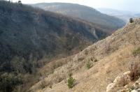 Významný stratigrafický profil od pragu do eifelu s paleontologickými lokalitami ve všech odkrytých členech., Jan Moravec, 2006