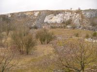 Žíla granodioritového porfyru v čelní stěně horosedelského lomu proniká vápenci, Pavla Gürtlerová, 2009