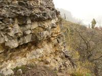 Kotýz - kotýzské vápence lochkovského souvrství, stratotyp, Pavla Gürtlerová, 2009