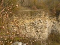 Lom na Kobyle - Koněprusy. Nasunutí přídolských vápenců (silur) na slivenecké vápence (devon) podél očkovského přesmyku severní stěně lomu. , Pavla Gürtlerová, 2009