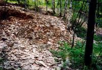 Přemysl Zelenka, 2007