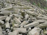 Zachovalá sloupcovitá odlučnost bazanitu v sutích na úbočí lomové stěny, sloupce až 1m., Pavla Gürtlerová, 2009