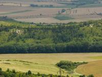 Pohled z vrcholu Hradiště (kóta 545m) k JV. na NPP - Bílé Stráně . Původně bílé opukové stráně jsou již zarostlé. Pouze v s. části částečně vystupují sutě., Pavla Gürtlerová, 2009