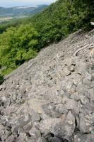Kamenné moře na z. svazích Plešivce, Vladislav Rapprich, 2009