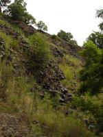 Část lomové stěny na západních svazích Plešivce, sloupcovitá odlučnost čedičových hornin, Pavla Gürtlerová, 2009