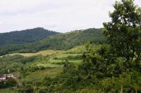 Zbytky lomové stěny na jižním svahu Holého vrchu pohled z Hradiště. , Vladislav Rapprich, 2009