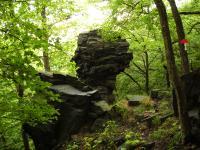 Skalní hřib (cca 5m) v bazaltoidech., Pavla Gürtlerová, 2009