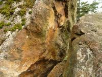 Skalní výchozy na ssz. hřbetu Kamenného vrchu. Puklina s tektonickým zrcadlem je následek pohybů lužického zlomu., Pavla Gürtlerová, 2009