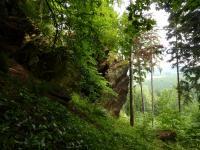 Skalní sruby v s. úbočí vrchu Výrovec (686 m) , Pavla Gürtlerová, 2010
