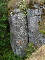 Sloupcovitá odlučnost čediče. Průměr sloupce  cca 1m.  Pod hradbami (severní část) na Krasíkově - Ovčím vrchu. , Pavla Gürtlerová, 2010