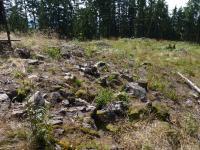 Sutě silicitů se stromatolity v okolí kóty Kokšín (684m), Pavla Gürtlerová, 2010