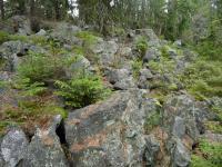 Kamenné sutě , Pavla Gürtlerová, 2010